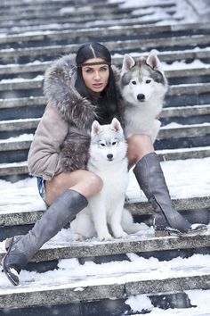 Wonderful All About The Siberian Husky Ideas. Prodigious All About The Siberian Husky Ideas. Alaskan Husky, Alaskan Malamute, Canis Lupus, Foto Fantasy, Wolves And Women, Amor Animal, Hipster Girls, Beautiful Wolves, Snow Dogs