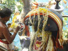 Thala Virutcha Sivalingam Picture Gallery | Thiru Koneswaram Trincomalee