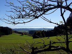 "Dettagli immagine relativi a:Fernblick"" vom Mühlviertel ins . Austria, Mountains, Nature, Travel, Image, Alps, Viajes, Traveling, Nature Illustration"