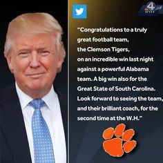 7d4de84c3bb5 Clemson Football, Clemson Tigers, Tigers Live, Panther, Pride, United  States,