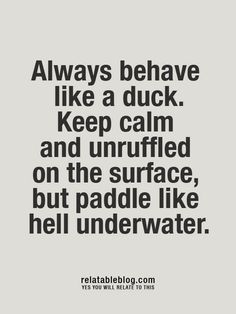 it's a weird but great quote, i think. Now Quotes, Great Quotes, Quotes To Live By, Funny Quotes, Inspirational Quotes, Duck Quotes, Motivational, Quirky Quotes, The Words