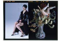 mameが荒木経惟とコラボした写真作品を森岡書店銀座店にて展示販売