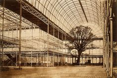 Crystal Palace transept in 1852, after the Exhibition and before Crystal Palace was relocated to Sydenham. Photo by Benjamin Brecknell Turner c.1852.  Victoria & Albert Museum.