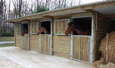 Le box - Des chevaux au box