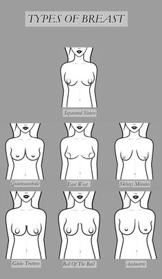 Bra Pattern, Figure Drawing Reference, Private Parts, Erotic Photography, Ldr, Tantra, Human Anatomy, Adult Humor, Stuffing