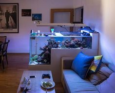 My living room ❤️ #austrianreefclub #acanthastrea #lps #sps #lpscoral #theaustriandropofftank #reeftank #reeflife #reefermadness #reefaquarium #reefporn #reefpack #reef #reefersdaily #tanksofinstagram #aquarium #aquascaping #aquascape #aquariumlife #aquariumhobby #ecotechmarine #pacificsun #aquaforest #coral #coralreef #coralreeftank