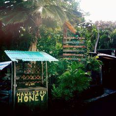 guest blog post: brooklyn hawaii | Free People Blog