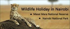 Air Tickets to Kenya for Best Wildlife Holiday in Nairobi