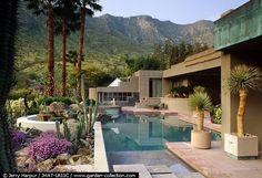 designer steve chase garden Palmsprings