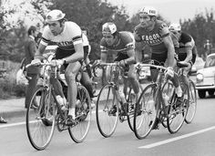 Fb_Werner Möller - Quatre big: Eddy Merckx, Roger De Vlaeminck, Raymond Poulidor et Hermann van Springel.