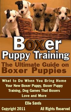 Boxer Puppy Training: The Ultimate Guide on Boxer Puppies, What to Do When You Bring Home Your New Boxer Puppy, Dog Games That Boxers Love and More by Ellie Sands. $3.72. 51 pages