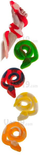 Giant Gummy Snake: Two-toned candy snake is over 2 feet long. ~ If anything needed much nomming, it's this.