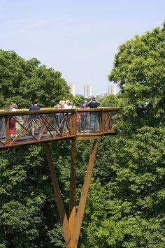 Kew Garden's Tree Top Walkway//