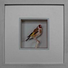 johan scherft . goldfinch . papercraft