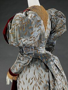 Evening Ensemble 1893