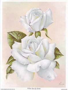 White Rose (*)