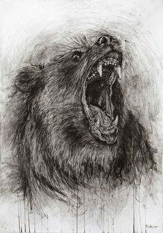 ROARING BEAR chacoal and etching on paper sice 70x100cm by Fabian Froehly facebook http://www.facebook.com/pages/Fabian-Froehly/253983487980680