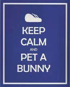 KEEP CALM AND PET A BUNNY