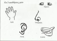 Image result for αισθησεις νηπιαγωγειο