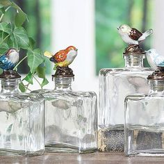 Square Glass Bottle With Bird Stopper