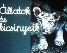Retro, Movies, Movie Posters, Fictional Characters, Wild Animals, Films, Film Poster, Cinema, Movie