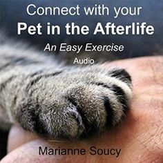 Healing Pet Loss – 10 tips for coping with the loss of a pet (book)