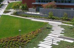 Bellevue City Hall, Phillips Farveaag Smallenberg | pfs.bc.ca