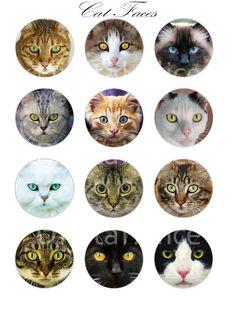 CAT staat voor ambachtelijke cirkels - pluizig Cute Kitty Cat hoofden Instant…