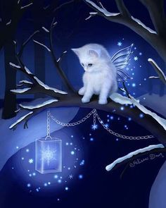 angel cat on the night Cute Baby Animals, Animals And Pets, Cute Animal Drawings, Cat Drawing, Beautiful Cats, Cat Love, Cat Art, Cute Wallpapers, Cats And Kittens