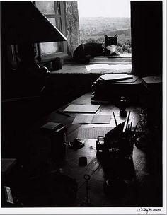 The Writer' S Cat, Gordes, France, 1954 by Willy Ronis (1910-2009)