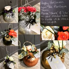 Gorgeous little pumpkin gifts Little Pumpkin, Table Decorations, Gifts, Beautiful, Home Decor, Presents, Decoration Home, Room Decor, Favors