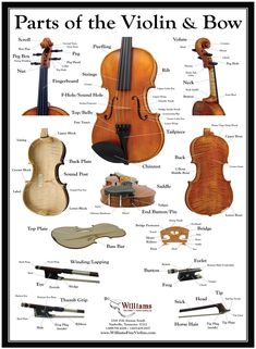 Parts Of The Violin And Bow Contrebasse Musical Instrument Poster No Frame Teaching Orchestra, Teaching Music, Violin Photography, Violin Parts, Violin Sheet Music, Music Worksheets, Violin Lessons, Music Education, Musicals