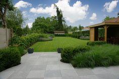 Paarsgroene bewondering - Groen van bij ons - Bloemen en planten Narrow Garden, Big Garden, Family Garden, Garden Pool, House Landscape, Garden Landscape Design, Backyard Patio Designs, Backyard Landscaping, Back Gardens