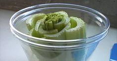 16+Tricks,+um+pflanzliche+Küchenabfälle+in+neue,+gesunde+Pflanzen+zu+verwandeln
