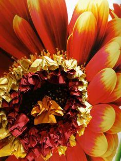 Eye Popping Colour #sunflower #sunglasses #screensaver Cloths #madeintheusa #local in #florida | #madeinusa Plastic Pouch, Screensaver, Cloths, Florida, Colour, Eye, Sunglasses, Products, Drop Cloths
