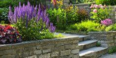 Obsadzenie schodów w ogrodzie