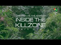 The Empire Files: Chevron vs. the Amazon - Inside the Killzone - YouTube