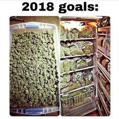 Buy Marijuana Online I Buy Weed online I Buy Cannabis online I Edibles Buy Cannabis Online, Buy Weed Online, Now Oils, Herbal Vaporizer, Monday Humor, It's Monday, Weed Pictures, Corona