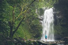 Desk to Glory | Hiking in Boquete, Panama
