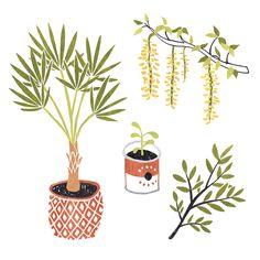 Garden illustrations for Libelle magazine by Sanny van Loon | plants | palm | branches | flowers  www.sannyvanloon.com