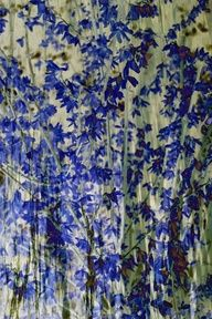 Blossom Art Print FR