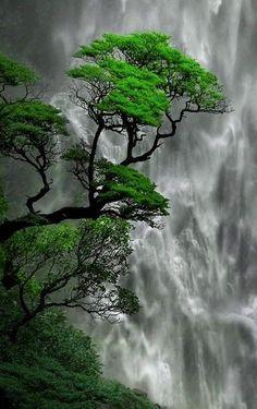 Beautiful Landscape Wallpaper, Scenery Wallpaper, Beautiful Landscapes, Beautiful Nature Pictures, Amazing Nature, Nature Photos, Beautiful Moon, Beautiful Places, Beautiful Nature Scenes