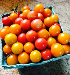 What bounty! #summer #garden #cherrytomatoes  #HappyMonday