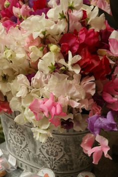 Gorgeous scented sweet peas are only available for a short season in Spring in Cape Town, pictured here in a metal planter at The Rose Cafe, www.therosecafe.co.za