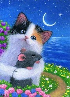 Caring for Cats – The Easy Way Beautiful Cats, Animals Beautiful, Cute Animals, I Love Cats, Cute Cats, Gato Gif, Cat Mouse, Tier Fotos, Cat Drawing