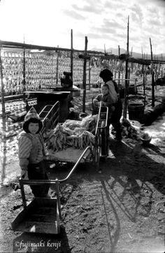 下北半島旧大畑町の漁港付近。昭和30年代の前半期の撮影