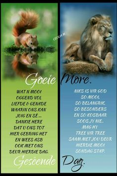 Afrikaanse Quotes, Goeie More, Good Morning Quotes, Verses, Poems, Advice, Amen, Night, Creative