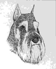 Schnauzer Grooming, Miniature Schnauzer, Schnauzers, Animals, Fictional Characters, Tips, Art, Miniatures, Dogs