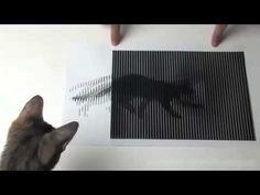 차원이다른 착시현상 - YouTube