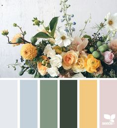 { flora palette } image via: Design Seeds color palettes . posted daily for all who love color. Spring Color Palette, Colour Pallette, Color Palate, Spring Colors, Colour Schemes, Color Combos, Yellow Color Palettes, Color Palette Green, Design Seeds